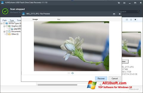 Снимка на екрана USB Flash Drive Recovery за Windows 10