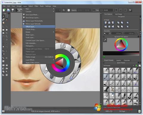 Снимка на екрана Krita за Windows 10